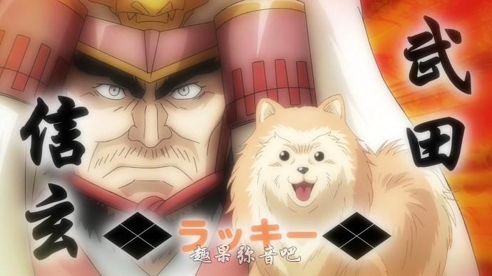 《织田肉桂信长》:专注汪星人的1月新番-爱趣猫
