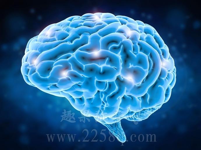关于大脑的9个传言,看看你被误导了多久-爱趣猫