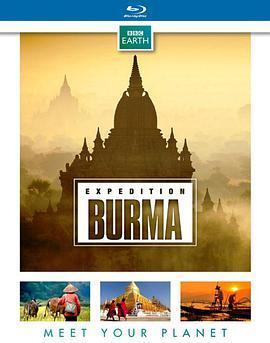 野性缅甸:失落的自然王国的海报