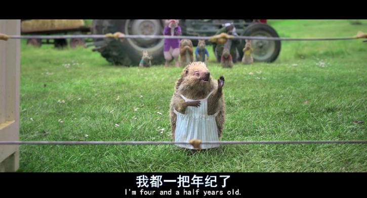 2018喜剧动画冒险《比得兔》BD1080P.高清下载