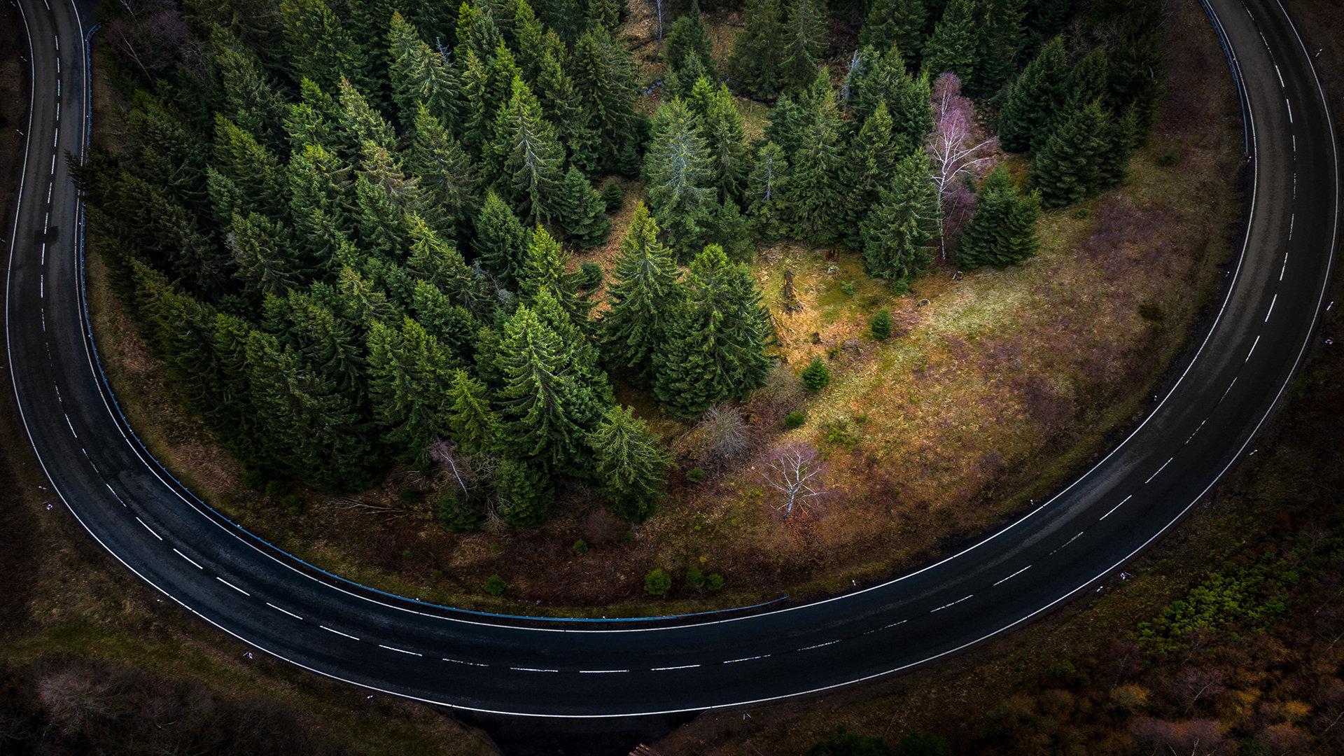 2021加拿大联邦SUV投资移民最新资讯