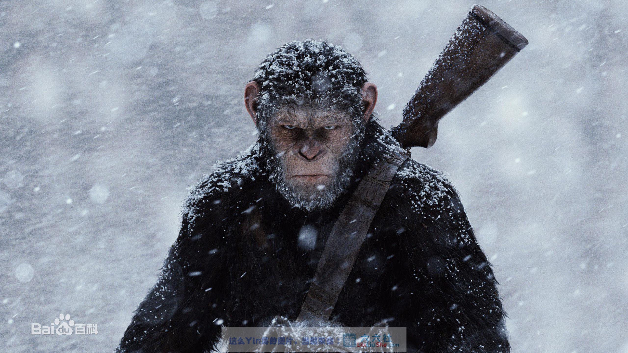 每日推荐:猩球崛起3:终极之战 War for the Planet of the Apes (2017) liuliushe.net六六社 第3张
