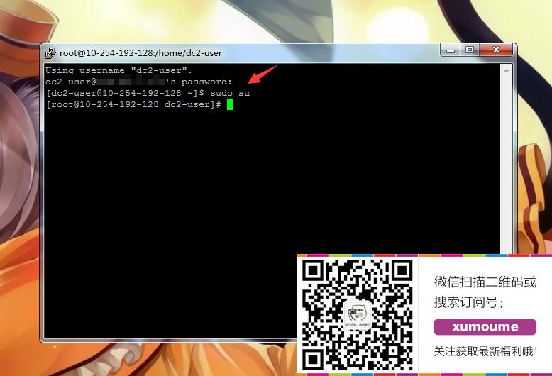 滴滴云服务器:Centos系统下安装wdpc面板完整图文教程