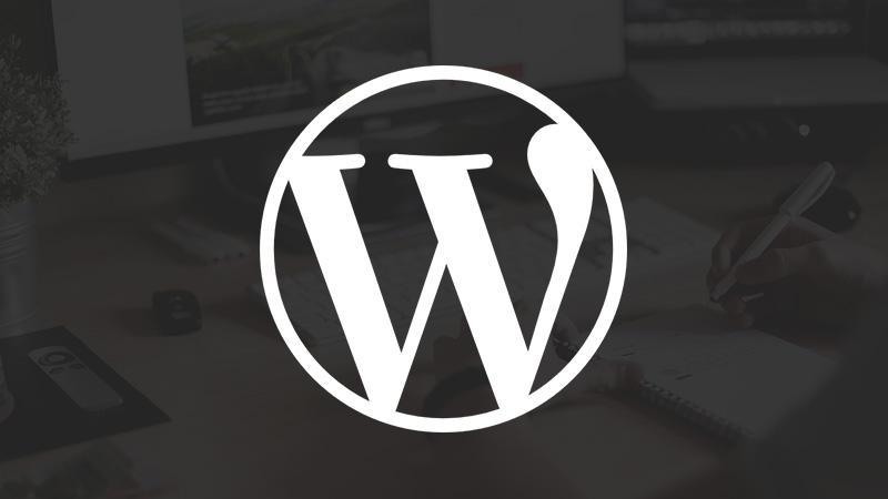 WordPress主题丨系列更新预告_WordPress主题推荐视频(1)插图