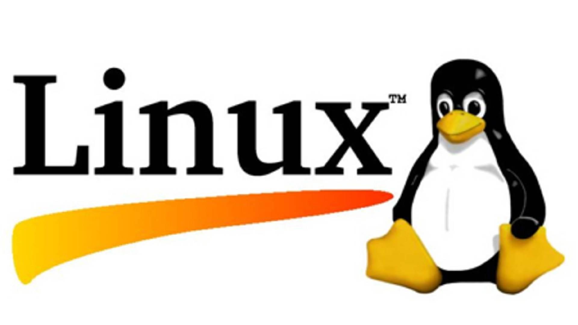 建站教程丨网站服务器应该选择Windows系统还是Linux系统插图5
