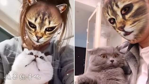用特效把自己变成猫脸:喵星人表示主子又犯中二病了!-爱趣猫