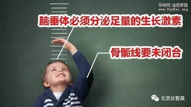 孩子个子矮的四大真相,父母必须知道