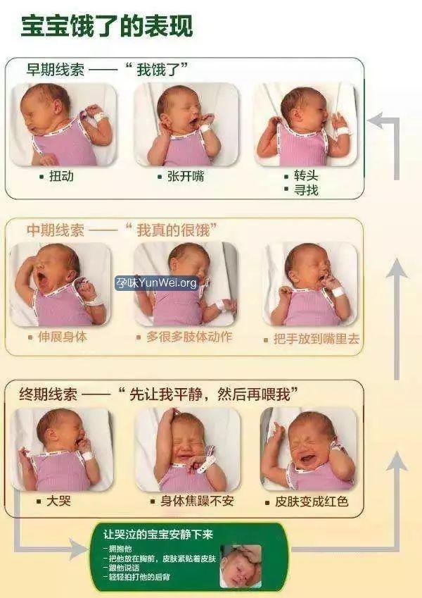 新生儿是如何表达自己饿了?