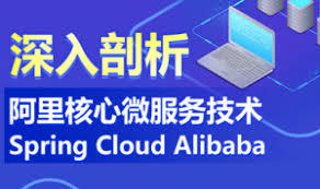 深入剖析阿里核心微服务技术 Spring Cloud Alibaba