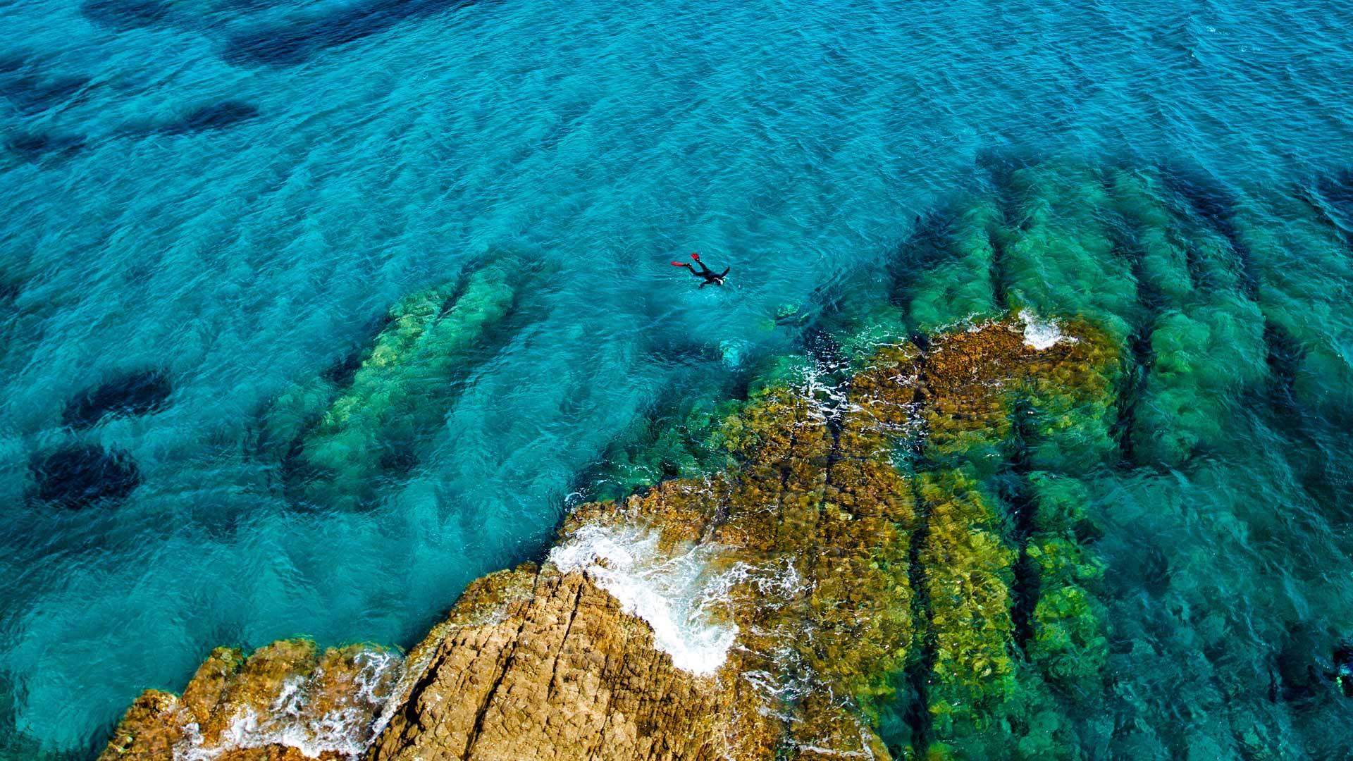 畅泳在地中海