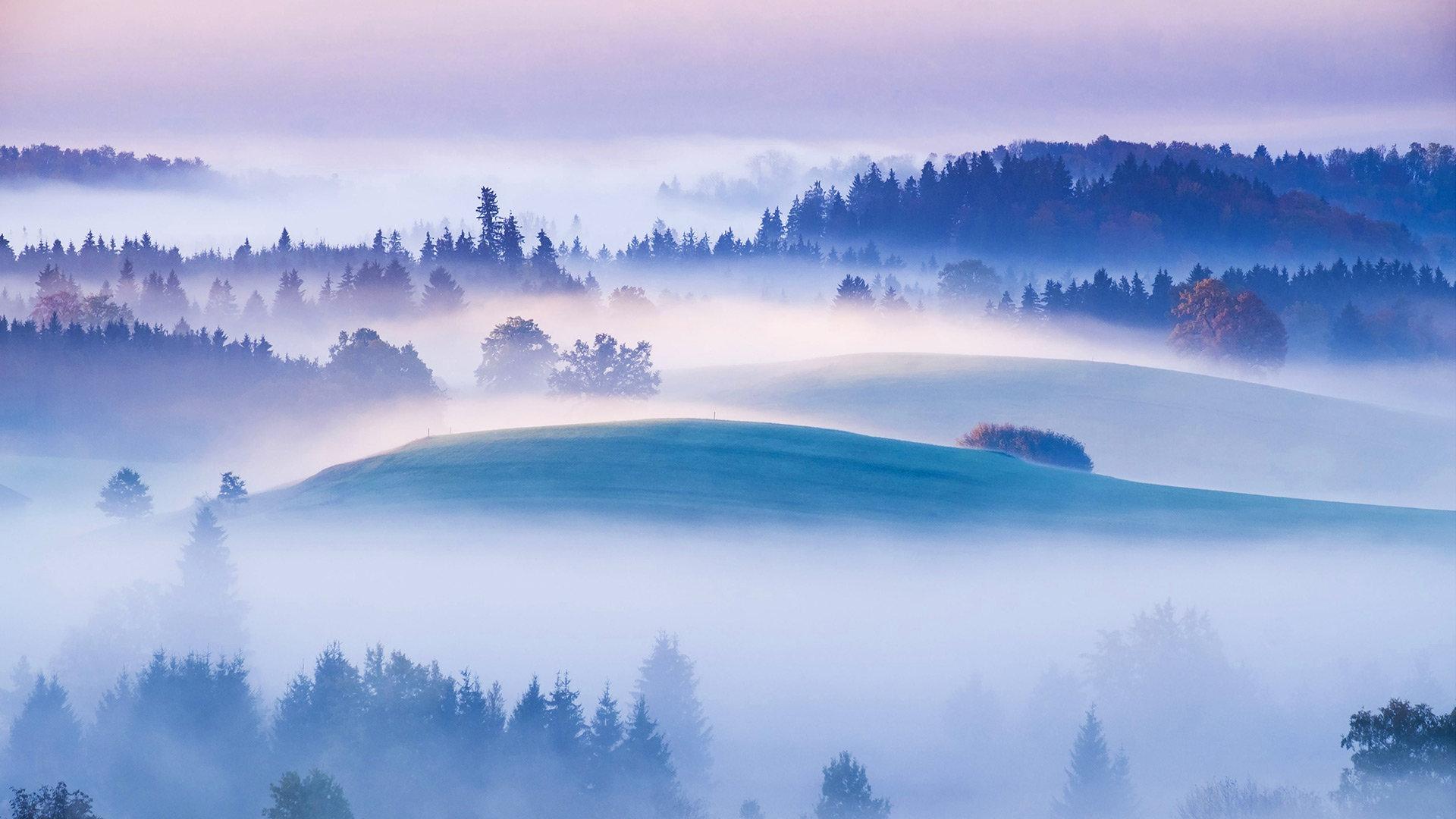 高地上的惺忪晨雾