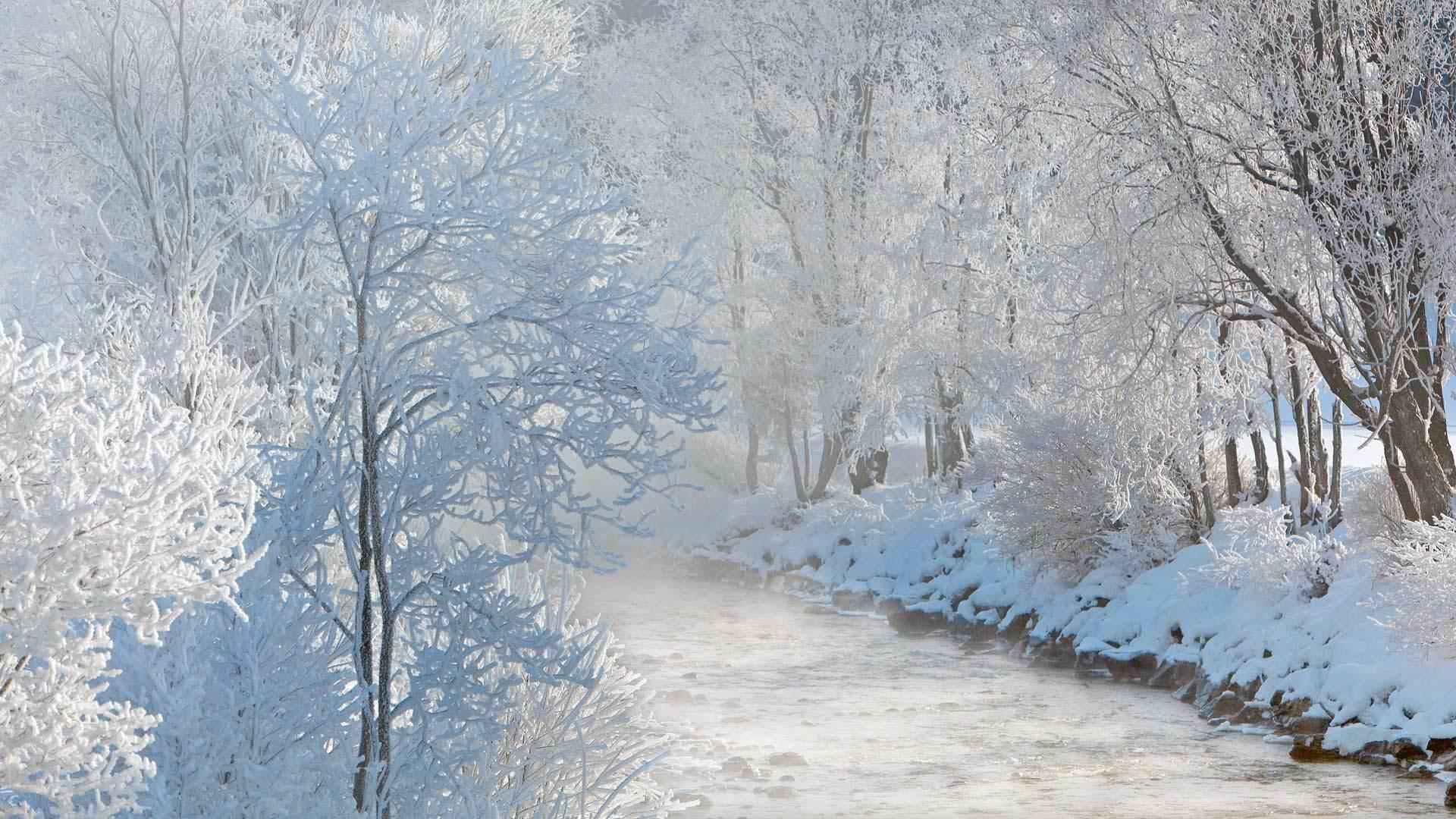 冬日的萨尔兹河