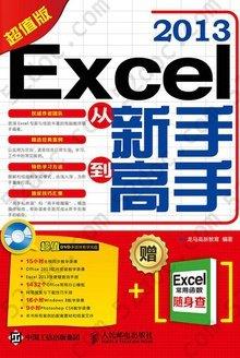 Excel 2013从新手到高手(超值版)