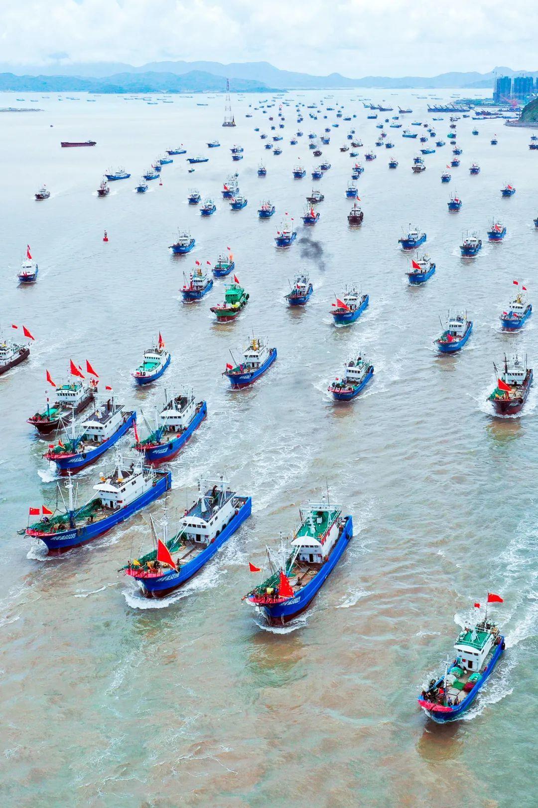2021年8月1日,舟山部分捕捞渔船结束禁渔期,千帆入海。图/视觉中国