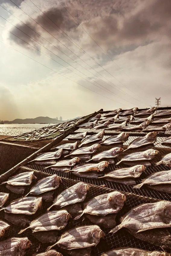 """在海风中晾晒的""""鱼鲞""""。图/图虫 ·创意"""