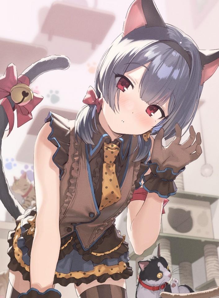 P站精选&想要做你的猫!猫系少女杜野凛世壁纸特辑-Zhaiuu.Com-宅尤尤