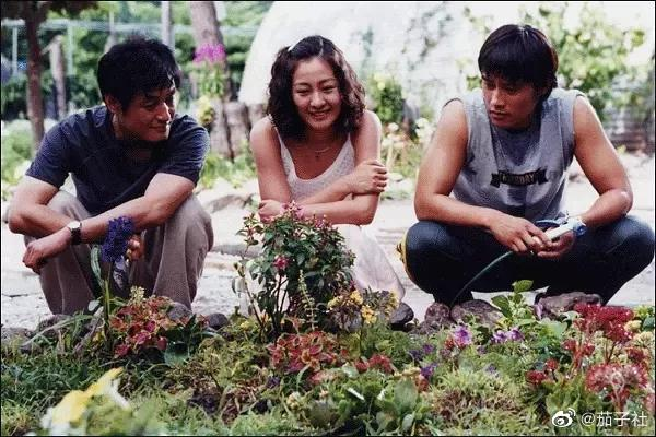 好看的韩剧推荐纯爱片《中毒》,结局让人眼前一亮