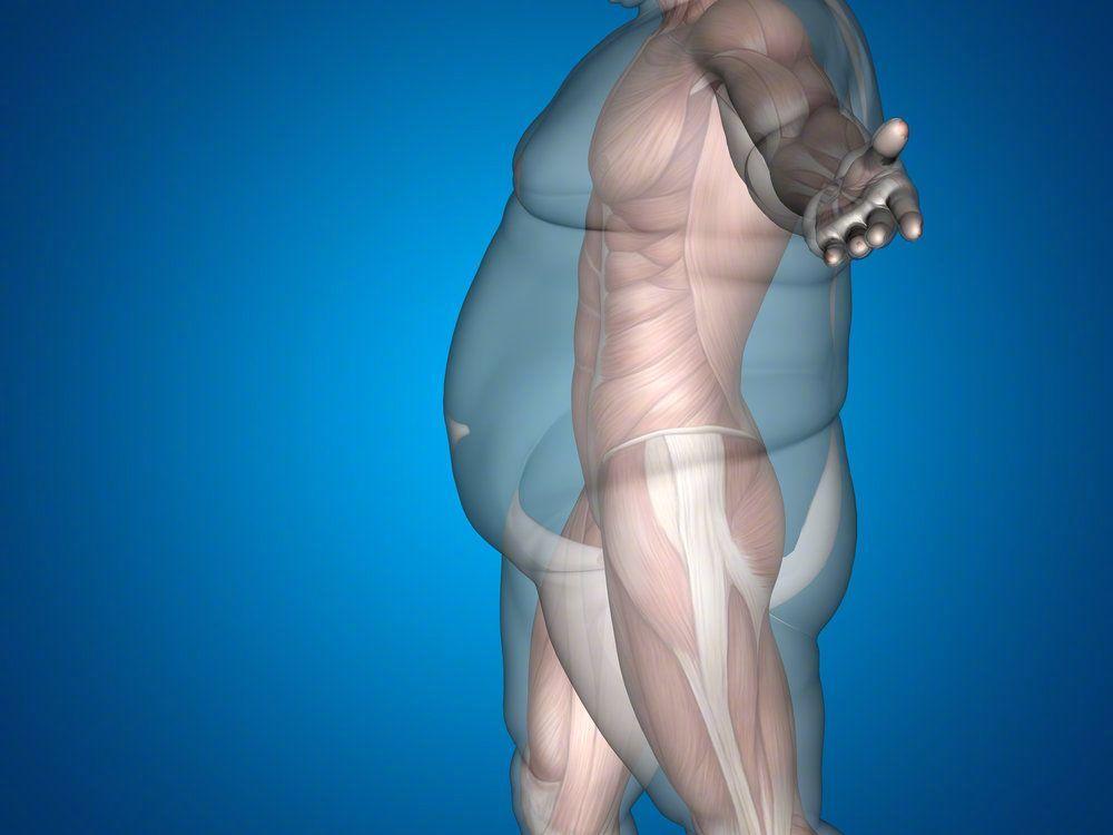 我的胖不是真的胖,只是肌肉都太害羞了,不怎么出现 涨姿势 第2张