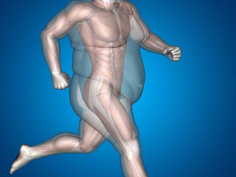 我的胖不是真的胖,只是肌肉都太害羞了,不怎么出现 涨姿势 第3张