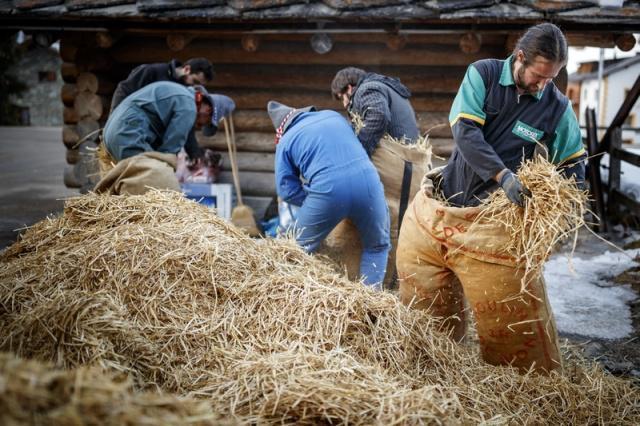 """瑞士埃沃莱纳,在冬季传统狂欢节上,民众身穿装满稻草的麻袋装扮成""""稻草人""""。 涨姿势 第6张"""