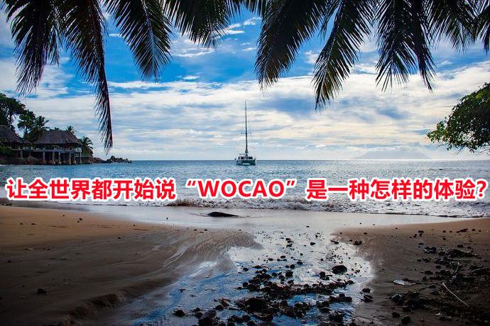 """让全世界都开始说""""WOCAO""""是一种怎样的体验?"""