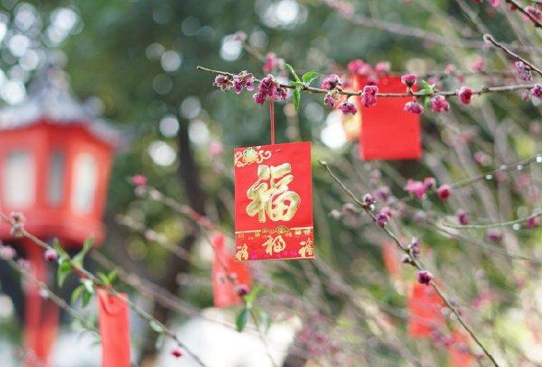 www.taoshu6.com_宅男过年回乡正确姿势,让你的这个年过的不一般 taoshu6.net淘书楼淘福利 第1张