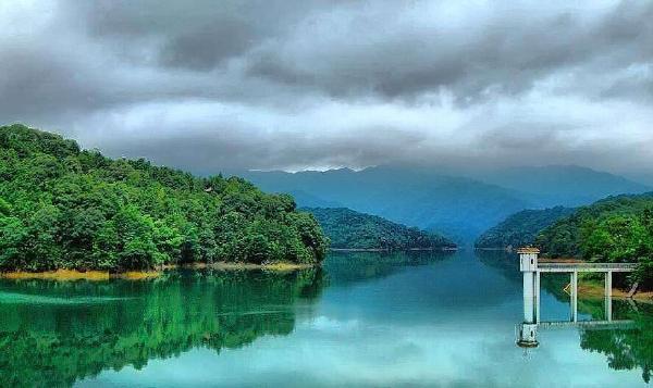 广东十大最美森林排行榜 广东省内最美的森林排名
