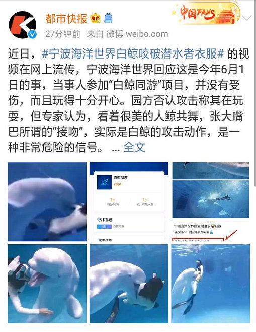 """2020日刊第94期:""""吴梦梦""""是什么梗? liuliushe.net六六社 第5张"""
