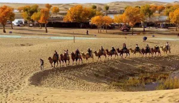 新疆十大旅游景点排行榜 新疆旅游必去风景名胜区