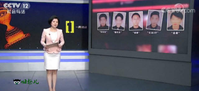 "CCTV社会与法""91大神""落网记"" 嗨头条 第1张"