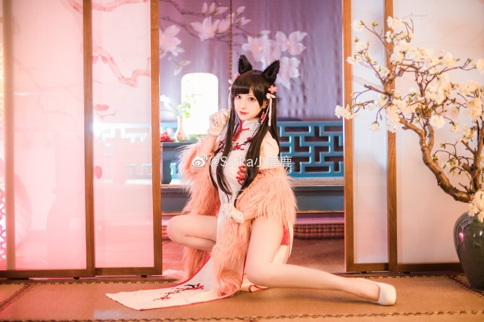妹子图@Shika小鹿鹿 这一套无比美艳的新春旗袍!