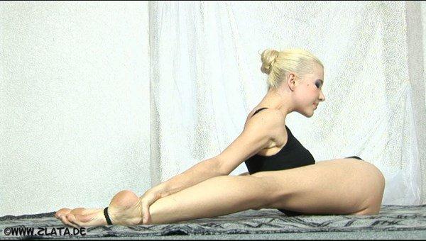 Zlata柔术训练图片壁纸