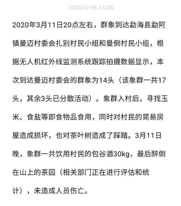 2020福利汇总第38期:is卧草 搞笑 第3张