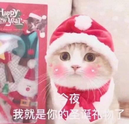 圣诞节表情包 今天我要放纵