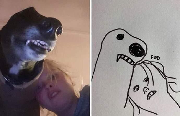 灵魂画手的宠物涂鸦图片,越沙雕越受欢迎!