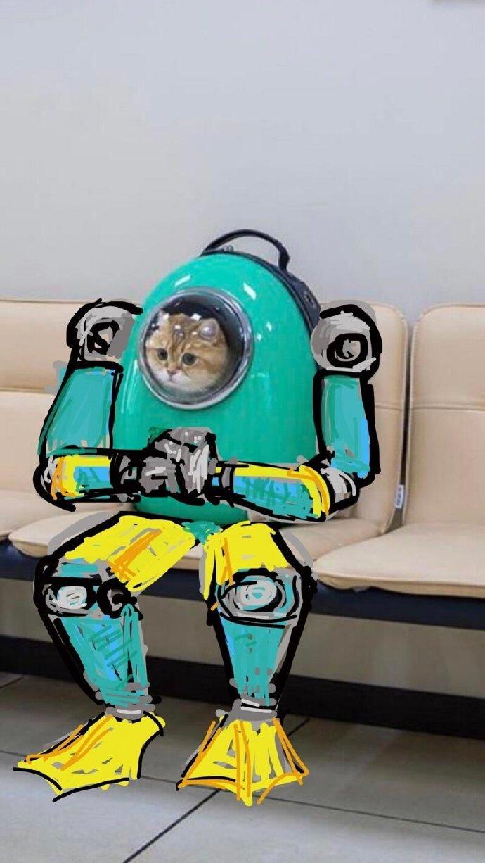 飞上太空!呆萌网红橘猫被网友们各种PS恶搞