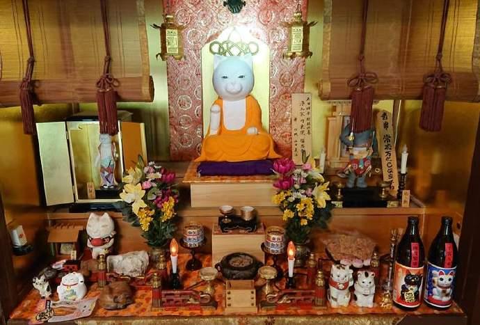 京都「猫猫寺」不仅有猫住持,还有猫甜点寺庙主题乐园