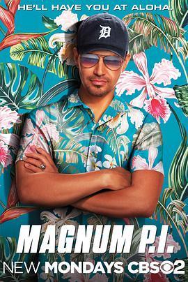 夏威夷神探