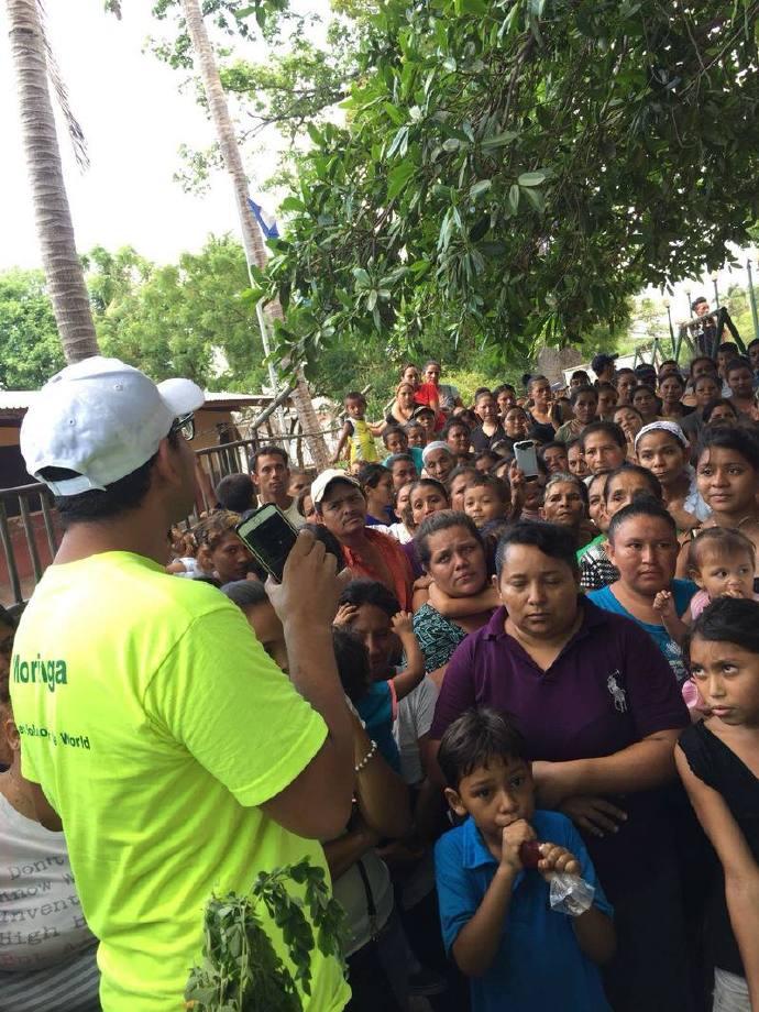 跟随辣木爱心基金会视角探访「洪都拉斯」辣木种植 辣木种植