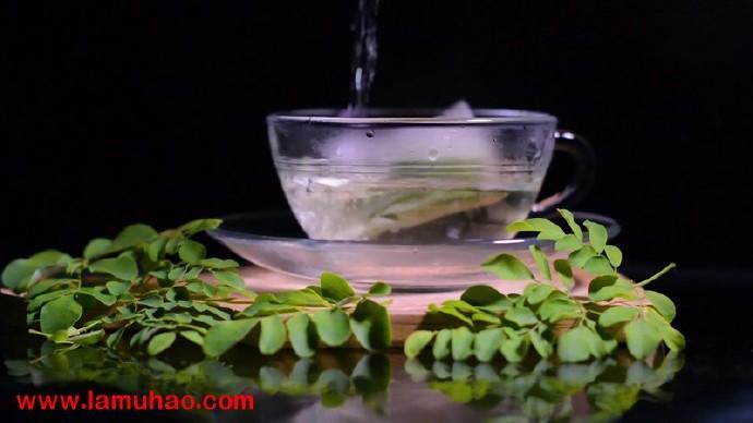 辣木(Moringa oleifera):具有多种药用价值的食用植物 辣木文献