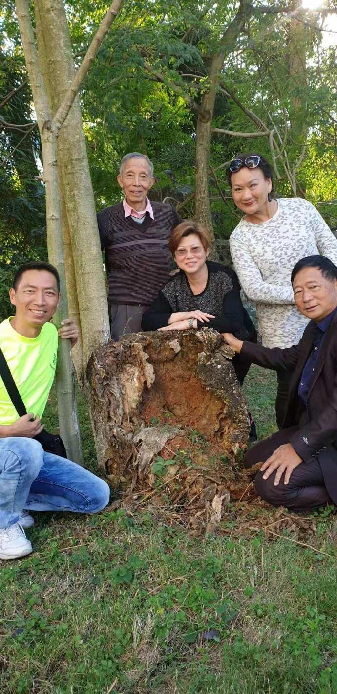 美国周白博士率队考察「云南辣木产业」发展 中国辣木