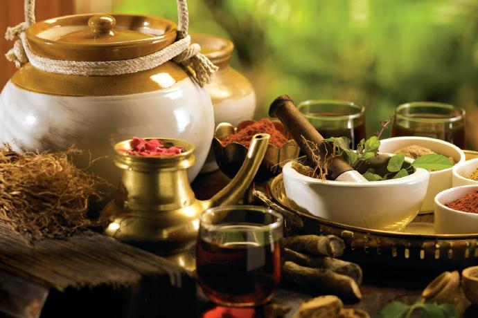 辣木的健康功效和药用用途