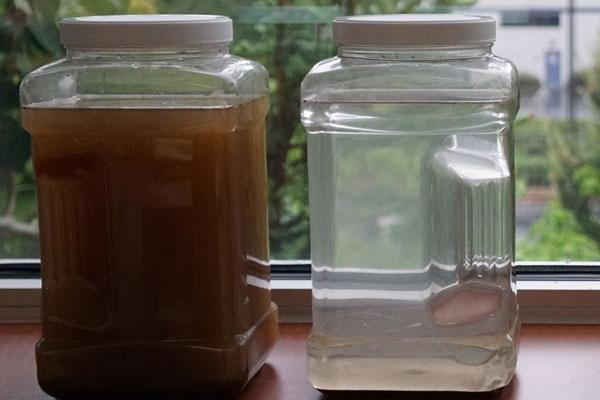 将「辣木种子净水」饮用该怎么做? 辣木籽