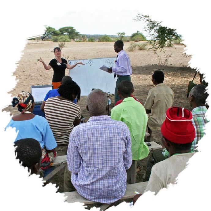 消除饥饿,坦桑尼亚「辣木女性」在行动 辣木种植