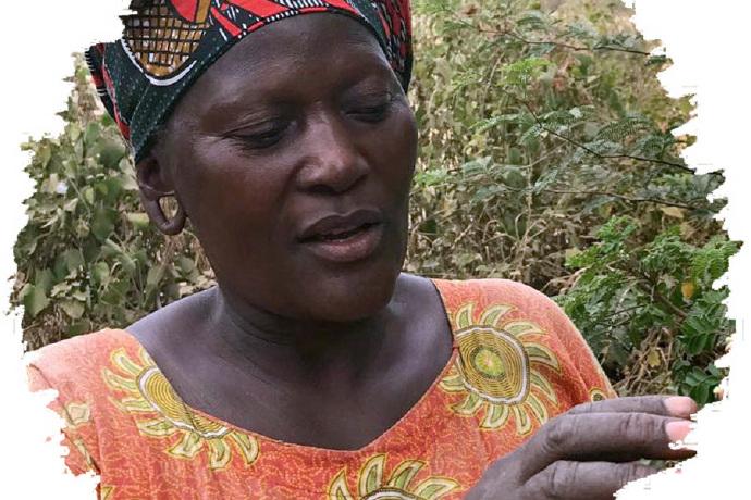 消除饥饿,坦桑尼亚「辣木女性」在行动