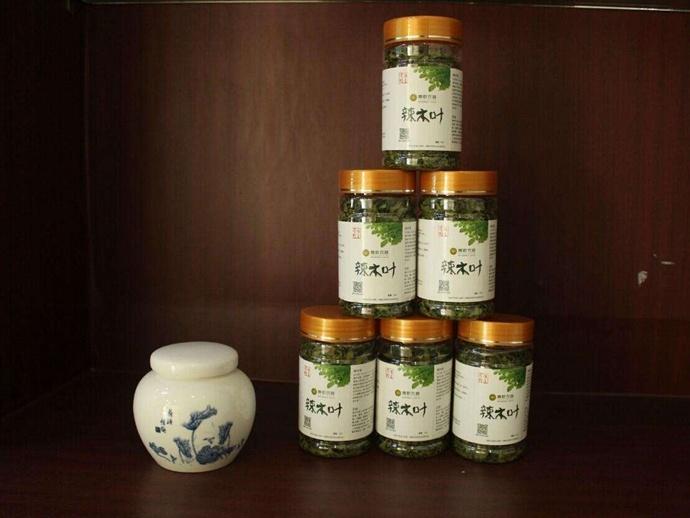 中国辣木产业联盟之「嵩乾农林」 辣木企业