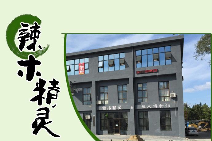 中国辣木产业联盟之「辣木精灵」