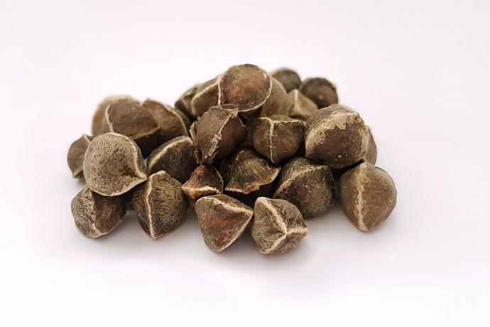 掉头发可以吃辣木籽吗?