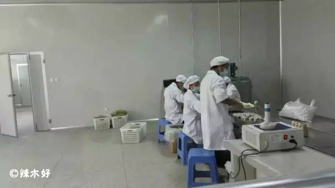 老挝辣木第一品牌「元真辣木」 辣木企业