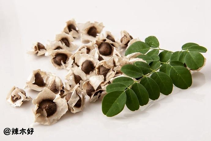 辣木籽之「五味辩症」及临床应用